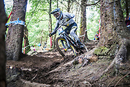 Mark Wallace of Canyon Factory Racing DH chops through the trees during his Qualifying Run at the UCI Mountain Bike World Cup in Fort William.