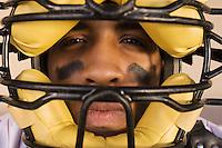 Baseball Catcher Wearing Mask