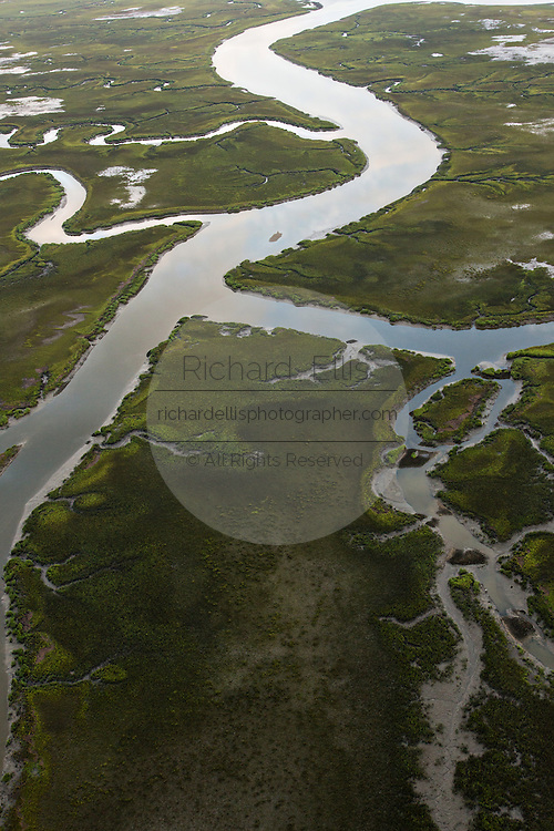 Salt marsh in Mount Pleasant, SC.