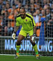 Wolverhampton Wanderers' goalkeeper Carl Ikeme