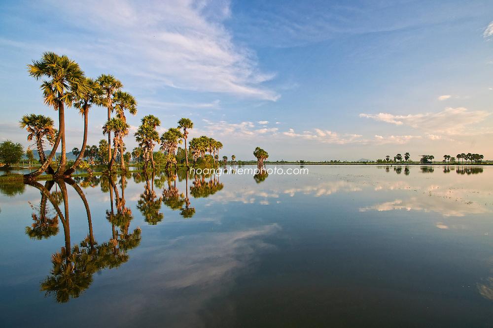 Vietnam Images-Landscape-Nature-Mekong delta phong cảnh việt nam