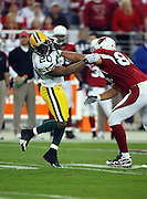 Green Bay Packers safety Atari Bigby (20) gets shoved back on a block by an Arizona Cardinals player during the NFC Wild Card Game against the Arizona Cardinals, January 10, 2010 in Glendale, Arizona. The Cardinals won the game 51-45 in overtime. ©Paul Anthony Spinelli