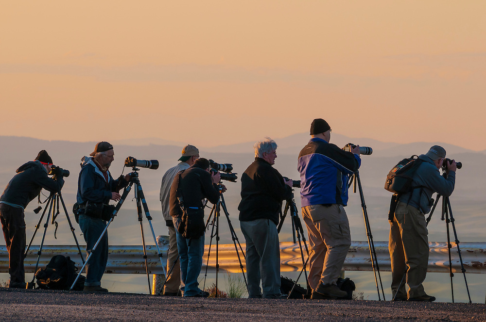 Photography workshop participants on Steptoe Butte at sunrise, Palouse wheat country, Washington.