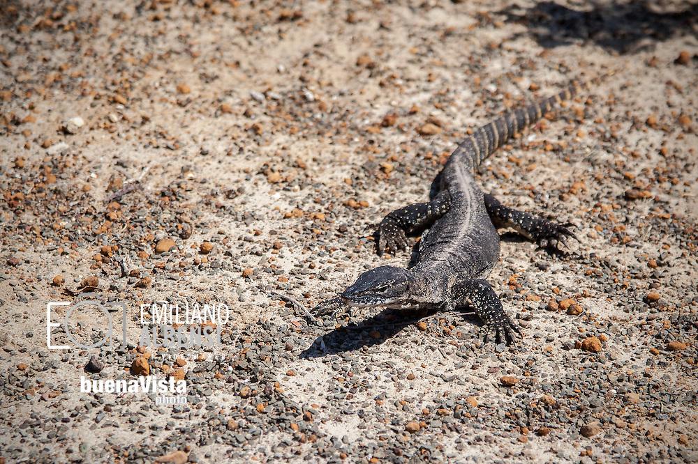 Emiliano Albensi<br /> Australia<br /> <br /> Ammira la natura selvaggia e maestosi paesaggi. Incontra leoni marini, canguri, koala, wallaby, pinguini, echidne e moltitudini di uccelli. Scopri aspre formazioni rocciose, caverne sotterranee, parchi nazionali nel bush, spiagge e baie dove nuotare, fare snorkeling, immersioni e pescare. Tutto questo &egrave; Kangaroo Island.<br /> <br /> Think of an island with 509km of Coastline &amp; 155km from the East Coast to the West Coast. With native bushland, pristine beaches to snorkel and sunsets to relax. Where koalas, wallabies, sea lions, penguins and thousands of birds are on your doorstep.<br /> This is Kangaroo Island.