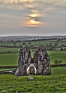 Usually I would keep subjects slightly off centre when composing, but in this case the linear nature of the sheep, rock and sunset screamed at me to break the rule. The challenge here was to take three exposures to get as much in focus as possible. Thankfully the sheep seemed to be either very interested in me spread eagle on the ground or just a poser. In post production I really wanted to ensure and enhance several things......drawing out the detail in the sheep and rock as well ensuring the landscape went from strong detail in the foreground grass to proportionally faded in the background, giving a slight ethereal feel. This all at the same time as keeping the sun correctly exposed to keep the yellowy orange against a grey sky.