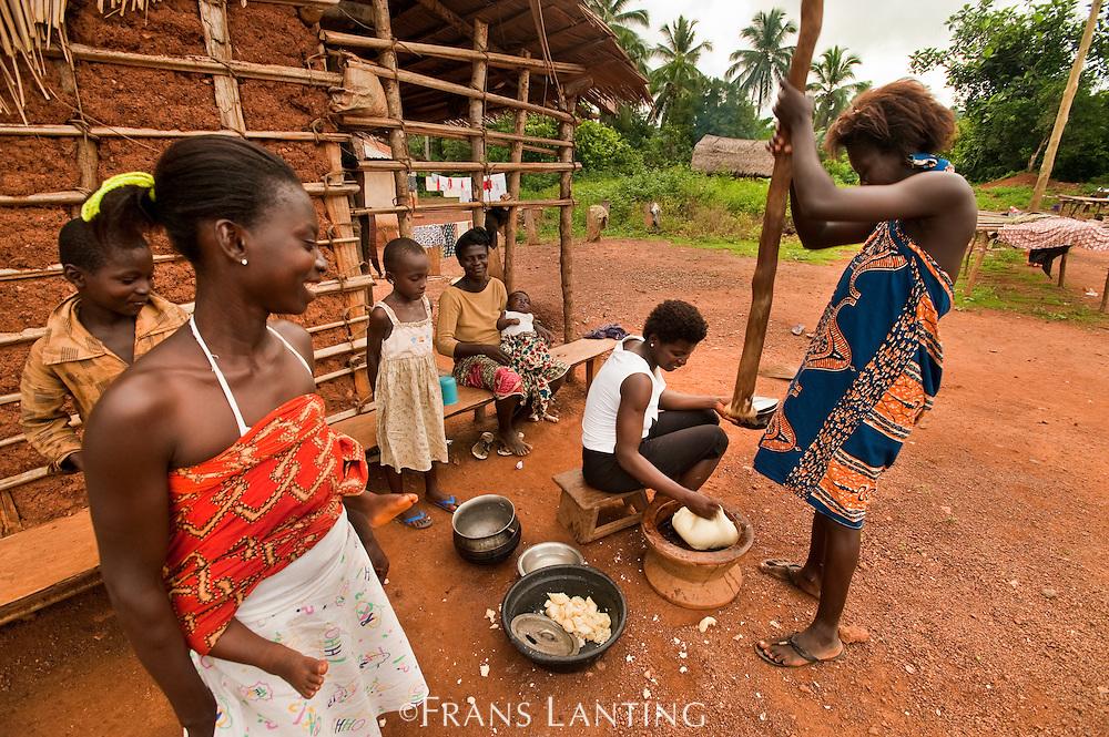 Women preparing cassava, Atobiase, Ghana