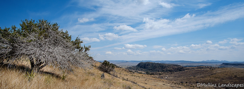 Davis Mountains State Park<br /> <br /> Available Sizes: 7x19, 12x36, Quad-Print (see Prints tab)