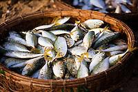 Baskets of Fish on China Beach.