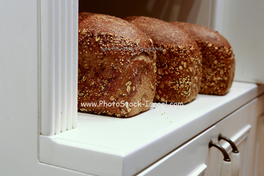 Loaf of freshly baked bread in a bakery shop