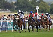 Beverley Races 160818