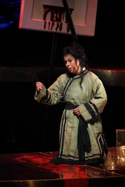 Seattle Opera Turandot Gold Cast Dress  Lina Tetriani (Liu).