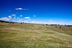 VIew of grassy praise, Wind Cave National Park, South Dakota, United States of America