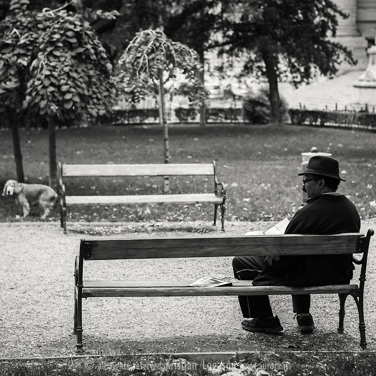 Man with hat sitting on a bench in one of the park gardens in central Budapest reading the daily newspaper while his dog plays on the grass