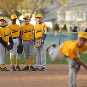 Team mates watch their pitcher warming up during the Norwalk Little League baseball competition at Broad River Fields,  Norwalk, Connecticut. USA. Photo Tim Clayton