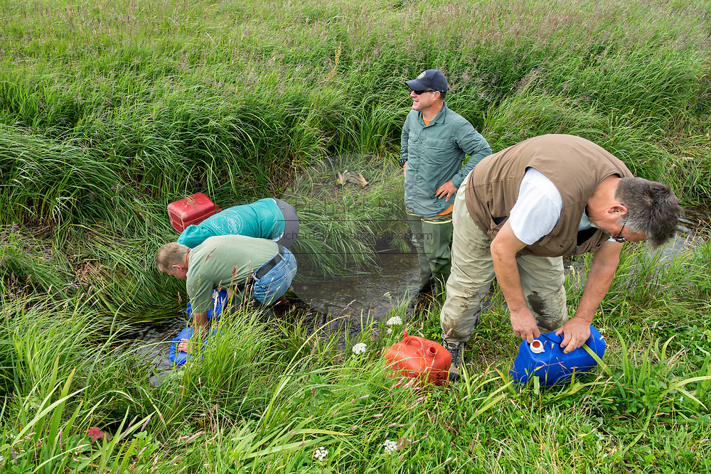 Park Ranger Tom Griffin, center, and Ed Weiss help campers retrieve drinking water from a spring at the remote McNeil River Game Sanctuary in the Katmai Peninsula, Alaska. The remote park has the largest concentration of brown bears in the world.