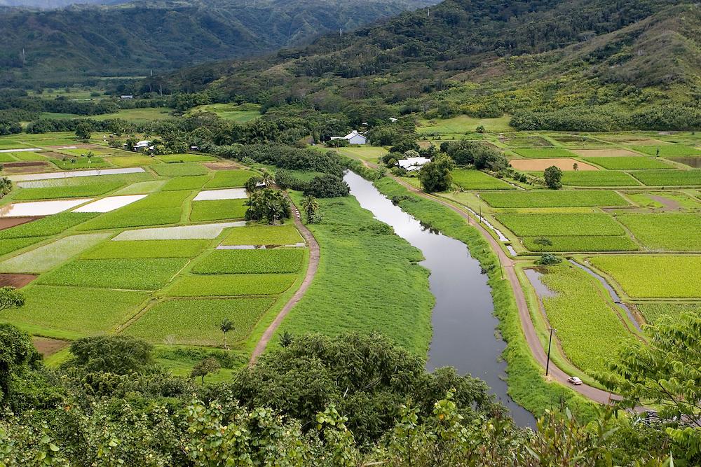 A green valley after a storm.<br /> Un valle de verde resplandeciente despu&eacute;s de una lluvia vespertina, te&ntilde;ida de verde por la humedad constante que se respira en la isla de Kauai (Hawai).