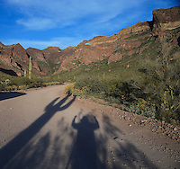 A man's shadow imitates a Saguaro cactus at Organ Pipe Cactus National Monument, Arizona, USA
