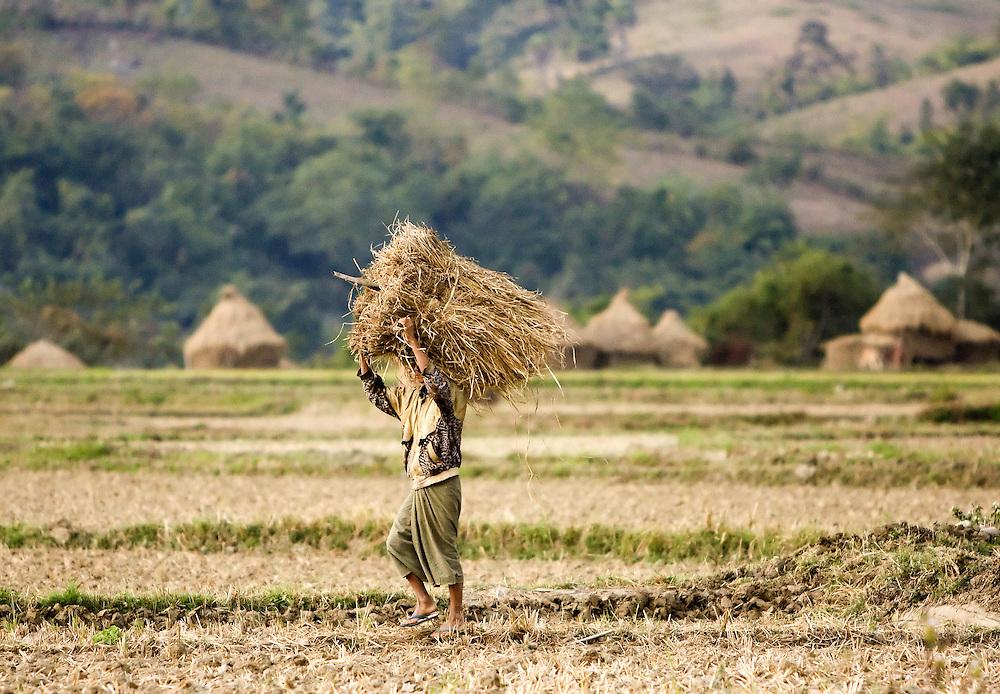 Taungtet, Magway Division, Myanmar.