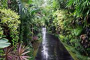 Pathway of Ametis Villa in Canggu. Bali, Indonesia.