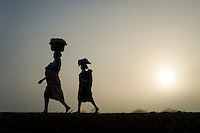 Mozambican ladies in the early morning mist, carrying loads on their heads, Limpopo floodplain, Maputo province, Mozambique