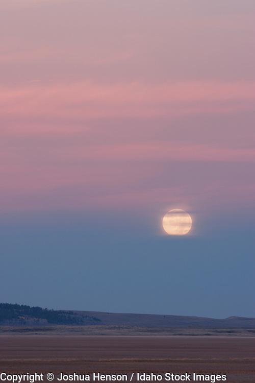 Idaho. The moon sets at dawn at Grays Lake National Wildlife Refuge in autumn.