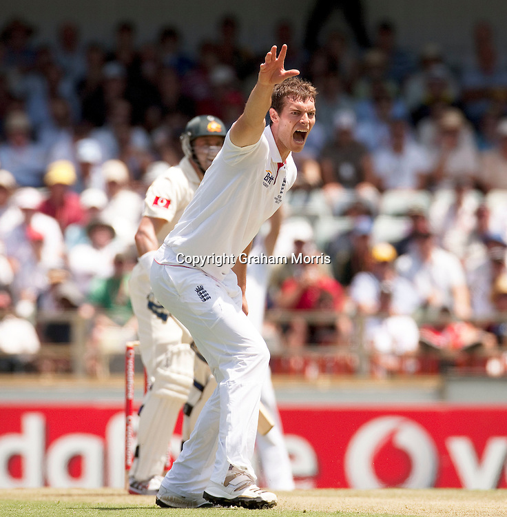 Bowler Chris Tremlett appeals during the third Ashes test match between Australia and England at the WACA (West Australian Cricket Association) ground in Perth, Australia. Photo: Graham Morris (Tel: +44(0)20 8969 4192 Email: sales@cricketpix.com) 16/12/10
