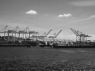 Cargo cranes in Seattle barbor