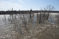 Spring High Water, Connecticut River, Holyoke, MA.