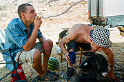 Ravers smoking Shisha, Falougha, Lebanon, 2010.