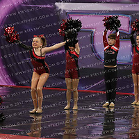 1036_Theatre Crazy Cats - Small Youth Pom
