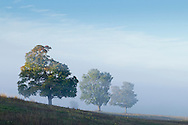 Goshen, New York -  Early  morning fog over farm fields on Sept. 24, 2014.