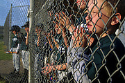 Lane McDonald of Madras , Or., cheers with his teammates between the fenced dugout during a baseball game on the Warm Springs Indian Reservation in Warm Springs, Oregon. He was praying for a hit as the game was now tight at the finish.