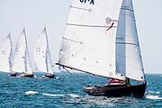 Bapple sailing in the Opera House Cup Regatta.