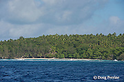 Island just south of Hunga Island, Vava'u, Kingdom of Tonga, South Pacific
