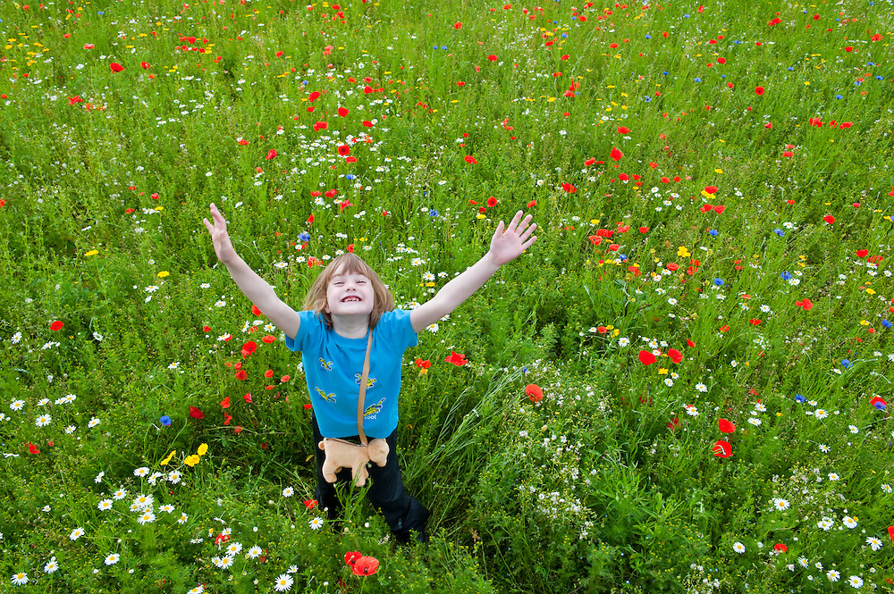 Young girl in a wildflower meadow, Scotland