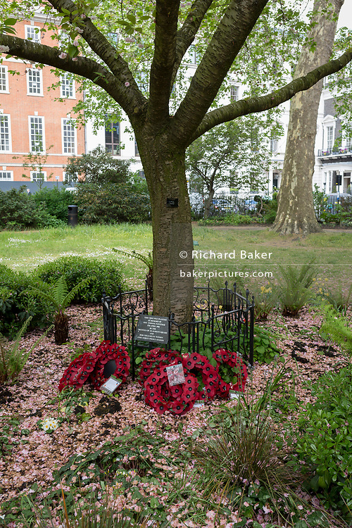 The memorial tree in memory of WPC Yvonne Fletcher in St. James's Square, on 29th April 2019, in London, England. WPC Yvonne Fletcher, a Metropolitan Police officer, was shot and killed by an unknown gunman on 17 April 1984, during a protest outside the Libyan embassy on St James's Square, London. Her death resulted in an eleven-day siege of the embassy, at the end of which those inside were expelled from the country and the United Kingdom severed diplomatic relations with Libya.