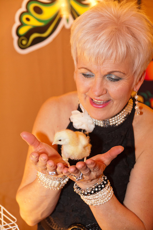 "Vesna, A Celebration of Spring. Vesna Festival is one of Canada's largest and longest running Ukrainian cultural festivals. Organizer Judy-Ann Chabun, in charge of the festival's decor in 2011, cuddles one of the chicks in the children's area. Children's exhibits highlighted the theme of the 2011 festival: ""Birds, Blooms and Pysanky – Spring Has Arrived""."