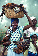 Woman with chickens, Haiti