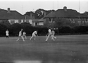 18/07/1970<br /> 07/18/1970<br /> 18 July 1970<br /> Cricket: Clontarf 1st XI v Old Belvedere, Leinster Senior Cup Final at Clontarf Cricket Club, Dublin. Frank O'Hanlon (centre), Old Belvedere, batting.