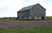 All that remains of this old farm is the barn. There must be such history associated with this building. If only it could talk!!