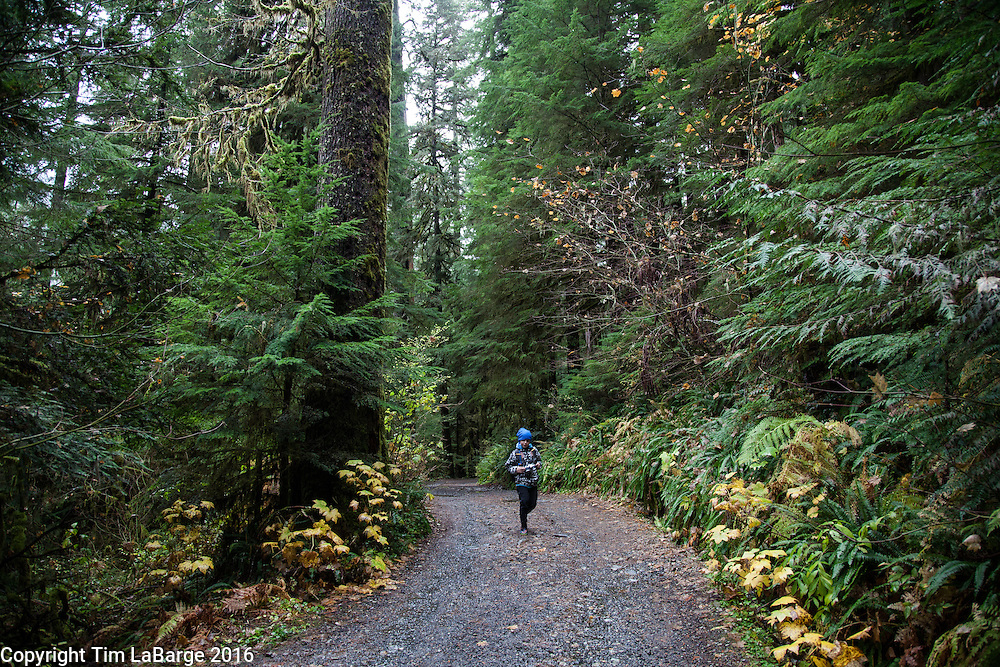 Hikers, trails and views at Opal Creek Ancient Forest Center along the North Fork of the Santiam River. The site was once a thriving mining town and pieces of that history lay scattered throughout the area. Photo © Tim LaBarge 2016