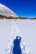 Backcountry skier crossing Heart Lake, John Muir Wilderness, Sierra Nevada Mountains, California  USA