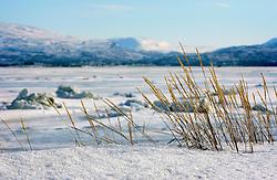 NORWAY FINNMARK 25MAR07 - Roddinessjoen Fjord, near Stabbursnes in Finnmark, Norway's northermost Arctic province...jre/Photo by Jiri Rezac..© Jiri Rezac 2007..Contact: +44 (0) 7050 110 417.Mobile:  +44 (0) 7801 337 683.Office:  +44 (0) 20 8968 9635..Email:   jiri@jirirezac.com.Web:    www.jirirezac.com..© All images Jiri Rezac 2007 - All rights reserved.