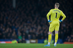 Jordan Pickford of Everton looks dejected - Mandatory by-line: Jack Phillips/JMP - 23/11/2019 - FOOTBALL - Goodison Park - Liverpool, England - Everton v Norwich City - English Premier League
