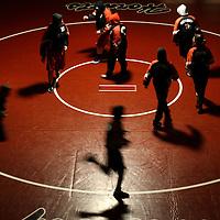 Sports Portfolio