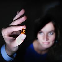 Nederland, Amsterdam , 1 november 2013.<br /> Schouwing Oranje Diamant bij veilinghuis Christies<br /> Foto:Jean-Pierre Jans