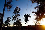 Tree swing in the hills.<br /> Flagstaff, Arizona