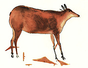 Altamira cave in Spain, famous for its Upper Palaeolithic cave paintings featuring drawings and polychrome rock paintings of wild mammals and human hands.