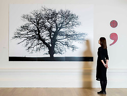 Alanna Brady, Development Manager at RSA with two works by Kate Whiteford OBE RSA from L to R False Perspectives 2019 'Now There, I make a comma…', Punctuation Series 2016 (Semi-Colon) at the RSA Open Exhibition of Art. The RSA Annual Exhibition is the most extensive exhibition of contemporary art and architecture in Scotland. The Annual Exhibition has evolved over the years, showcasing Scottish art alongside invited international artists. The exhibition runs from 2 November to 11 December 2019 at the RSA Building, Edinburgh.