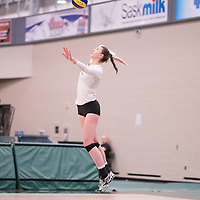 1st year outside hitter Jessica Lerminiaux (12) of the Regina Cougars in action during Women's Volleyball home game on February 9 at Centre for Kinesiology, Health and Sport. Credit: Arthur Ward/Arthur Images